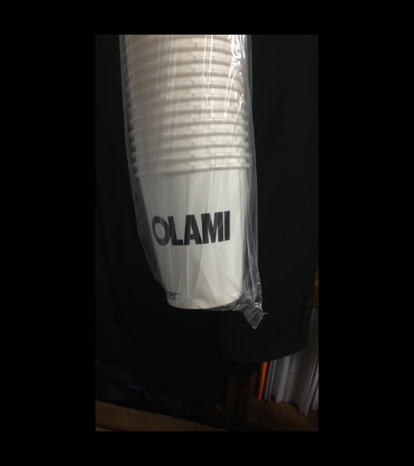 Olami-1-copy-3j